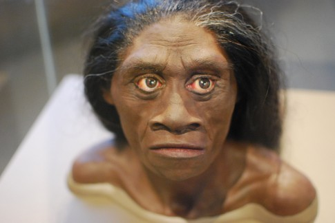 Odkryto nowy gatunek człowieka?