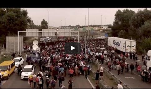 Czy tak ma wyglądać Europa za kilka lat? Przerażający filmik z działań uchodźców…