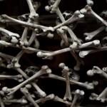 Miejsce śmierci, przerażenia i milczenia – kaplica czaszek w Czermnej