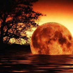 Humanoidalna istota przelatuje na tle Księżyca? Co zapowiada jej ukazanie? Zobaczcie nagranie