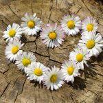 Pięć magicznych sposobów na MIŁOŚĆ! Czyli jak przywołać wymarzonego partnera…