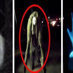 10 legendarnych stworzeń nagranych w rzeczywistości!? Zobaczcie szokujący filmik!