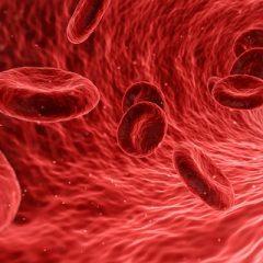 Masz ten wyjątkowy typ krwi? To oznacza, że jesteś obdarzony niezwykłą…