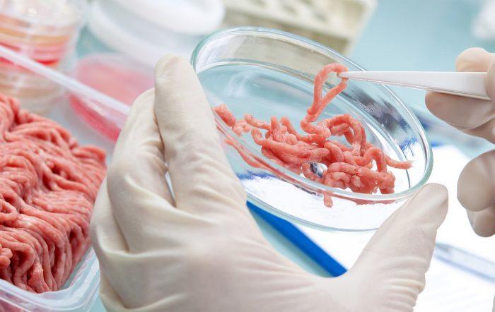 Mięso hodowane w laboratorium trafi do sprzedaży jeszcze w tym roku?