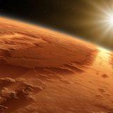 Na Marsie uchwycono PTAKA? Co naprawdę żyję na Czerwonej Planecie? Sami zobaczcie! (NAGRANIE)