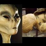 Mumia boga kosmity odkryta w piramidzie? To BÓG Ozyrys? (Nagranie)